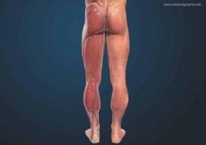 Douleurs aux jambes